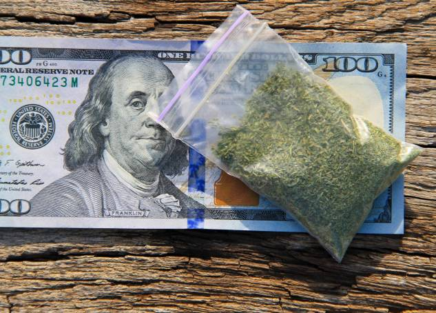 Identifying Strains in Marijuana Startups: Which Weed Business is Right for You?
