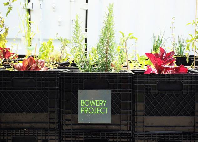 Bowery Farming Raises $7.5M for its High-Tech Indoor Farms